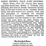 New York Times Article, November 29, 1888